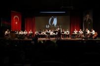 SAMI AYDıN - Sultan Şehir Ve Kültür Ve Kardeşlik Gecesi Düzenlendi