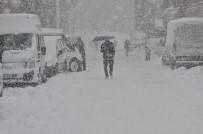 SOĞUK HAVA DALGASI - Yüksekova'da yoğun kar yağışı
