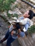 YAĞMUR SUYU - Antalya'da Mahsur Kalan Ördek Seferberliği