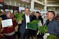 MEHMET ÖZEN - Başkan Uysal, Yenigöl Mahallesi'nin Kadınlarını Ağırladı