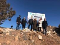 EYLEM PLANI - Korkuteli'de Maden Sahaları Yeşilleniyor