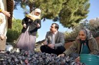 ZEYTİNYAĞI - AK Parti'li Erdem'den Zeytinciye Prim Müjdesi