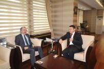 CENGİZ YAVİLİOĞLU - Bakan Yardımcısı Yavilioğlu Ağrı'da