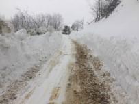 Ordu'da Kar Mücadelesi Sürüyor