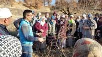 ABDULLAH ÇALIŞKAN - Pazarlar Halk Eğitim Merkezi 2016 Yılında 30 Branşta 65 Kurs Açtı