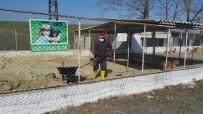HAYVAN SEVGİSİ - Sokak Hayvanları İçin Zemin Kumu Yenileme Çalışmaları
