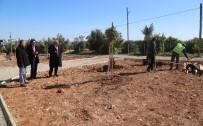 KARGıPıNARı - Erdemli Belediyesi, Mahallere Park Kurmaya Devam Ediyor