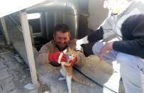 HAVALANDIRMA BOŞLUĞU - Havalandırma Boşluğuna Düşen Kediyi Hastanenin Sivil Savunma Ekipleri Kurtardı
