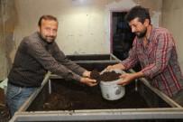 GESI BAĞLARı - Melikgazi Belediyesi Solucan Gübresi Üretiyor