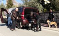 KANUNİ SULTAN SÜLEYMAN - Muğla Polisinden Uyuşturucu Denetimi