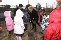 MURAT SEFA DEMİRYÜREK - Öğretmen Ayşe Aktaş Anısına Ağaç Dikildi