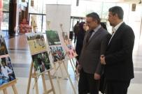 İSLAM İŞBİRLİĞİ TEŞKİLATI - Yetimler İçin Fotoğraf Sergisi Açıldı