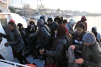65 Kaçak Göçmen Yakalandı