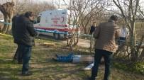 ADLI TıP - Göğsünden Vurulup Tarlaya Bırakılmış