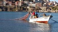 DEMIRLI - Yunustan'dan Kaçan Kefaller, Amasralı Balıkçıları Sevindirdi