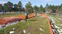 Okul Sporları Oryantring Şampiyonası Düzce'de Yapıldı
