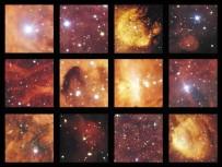 SAVAŞ VE BARıŞ - Gök Kedi Ve Kozmik Istakozun Buluşması