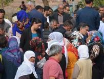 MEHMET EMIN AKTAR - HDP'li Feleknas Uca hakkında 'zorla getirme' kararı