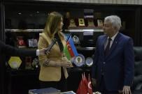 Azeri Milletvekili Paşayeva Açıklaması 'Türkiye Ne Kadar Güçlenirse Azerbaycan Da O Derece Güçlenir'