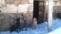 BİXİ - Bingöl'de PKK'ya ağır darbe