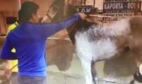 Oto Yıkamacıda At Yıkadılar