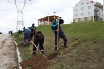 YENIKÖY - Daha Yeşil Başiskele İçin Çalışmalar Sürüyor