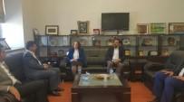 HÜSEYIN AKSOY - İş Adamları Ve İş Kadınları Konfederasyonu Genel Başkanı Atasoy, Diyarbakır'da
