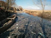 OKSIJEN - Eber Gölü'nde Yaşanan Toplu Balık Ölümleri