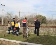 ACIL SERVIS - Aydın'da Tren Kazası Açıklaması 1 Ölü