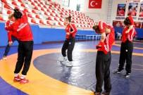 AVRUPA ŞAMPIYONASı - Minderin Yıldız Sultanları 2017 Yılına Damga Vurmaya Hazırlanıyor