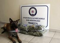 DİYARBAKIR - Trabzon'da Uyuşturucu Operasyonu