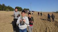 ÖRNEK PROJE - Yangında Kül Olan Ormana Öğrenciler 2 Bin Fidan Dikti