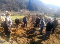 TARıM - Bartın'da 2 Köyde Kızılcık Bahçesi Kuruldu