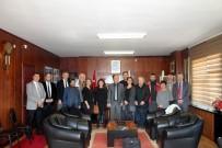 TABIPLER ODASı - Dünya Çevre Gönüllülerinden Marmaraereğlisi'ne Destek
