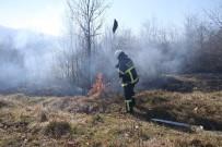 SAPANCA GÖLÜ - Kontrolsüz Şekilde Yakılan Lastik Çalılık Alanı Kül Etti