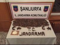 ŞANLIURFA - Şanlıurfa'da Toprağa Gömülü Mühimmat Ele Geçirildi