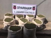 İki Terörist Etkisiz Hale Getirildi Açıklaması 254 Kilo Esrar Ele Geçirildi