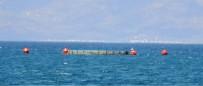 ÖZLEM YILMAZ - Ayvalık'ta Balık Çiftlikleri İçin Bilirkişi İncelemesi