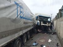 MİNİBÜS ŞOFÖRÜ - Hastane Ziyareti Dönüşü Kaza Yaptılar