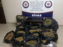 UĞUR YIĞIT - Sivas'ta 44 Kilo Esrar Ele Geçirildi