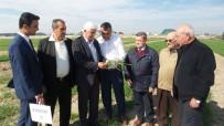 MEHMET ÖZMEN - 'Antalya Buğdayını Arıyor' Projesi
