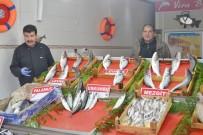 BALIK SEZONU - Balıkçıların Umudu 1 Eylül'e Kaldı