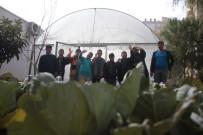 KALİFİYE ELEMAN - Dezavantajlı Özel Öğrenciler Okulu Sera Bahçesine Dönüştürdü