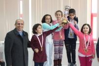 Karaman'da Okullararası Satranç İl Birinciliği Müsabakaları Sona Erdi