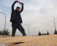 İNCIRLIK - Polis, Mısır Yüklü Tırlarda Şişle Kaçak Akaryakıt Aradı