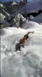 İSMAİL DEMİR - İki Metre Kara Atlayıp Kulaç Attı