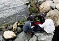 KADIN CESEDİ - Zeytinburnu Sahilinde Kıyıya Kadın Cesedi Vurdu