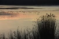 Sinop'ta Sarıkum Gölü Buz Tuttu