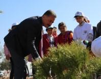 PİKNİK ALANLARI - Tuna; 'Çocuklarımızı Sokağa Değil Yeşile Özendirelim'