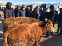 Vali Arslantaş, Canlı Hayvan Pazarında İncelemelerde Bulundu